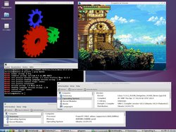 Frogatto_with_the_unofficial_Mesa_version_10.0.4_on_Lubuntu_14.04_PowerPC.jpg